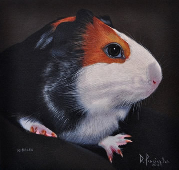 nibbles oil painting portraits by David Pennington